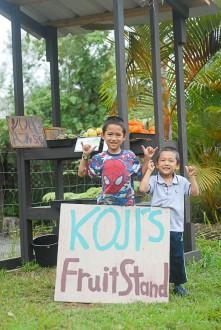 Hawaii Farm Fruit Stand